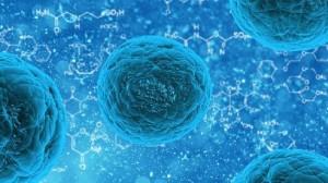 staminali_embrioni_sclerosi-e1481444342416